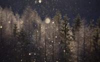 冬の夜に。diamond dust 〜 jeff beck