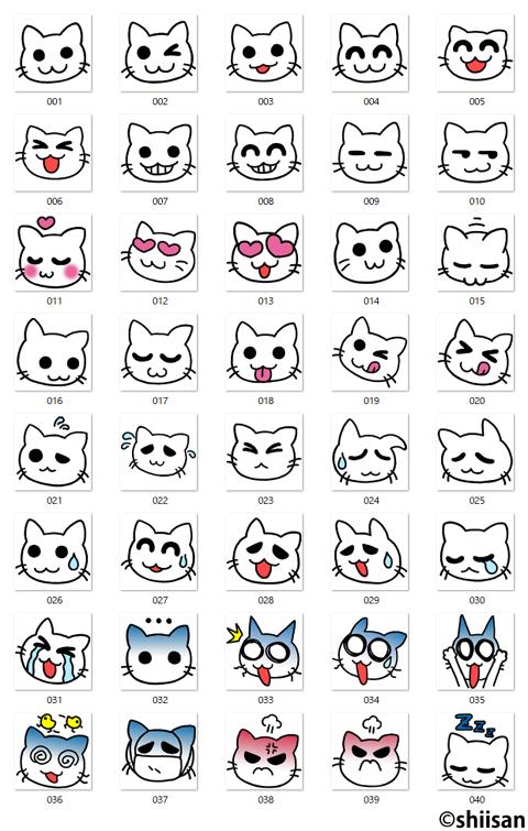 表情がわかりやすい白猫