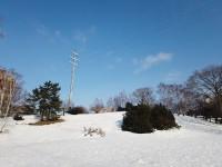 水曜どうでしょうの聖地・平岸高台公園冬編