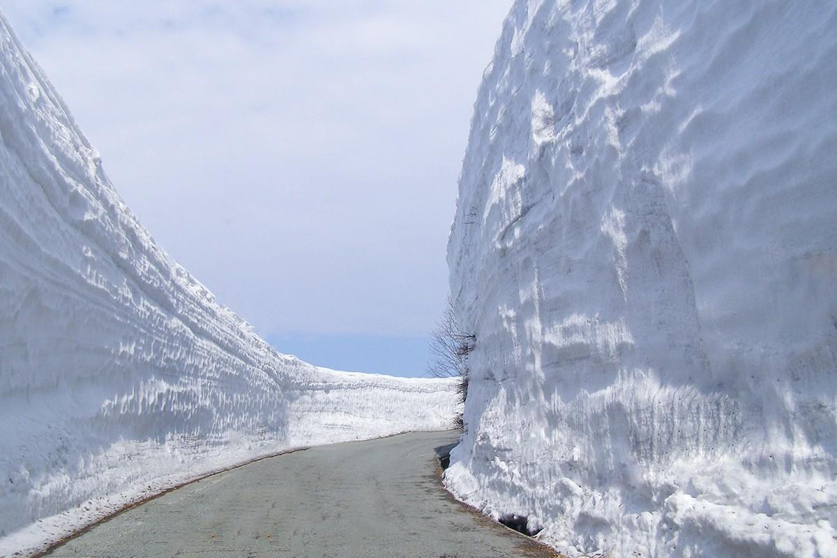 山形観光情報:月山 雪の回廊