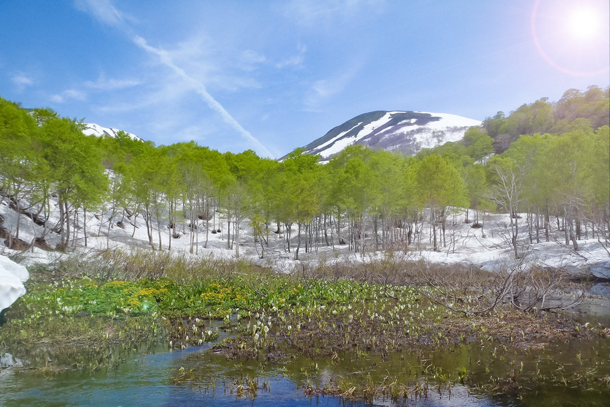 山形観光:日本百名山「月山」