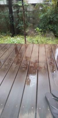 雨ニモマケズ☔