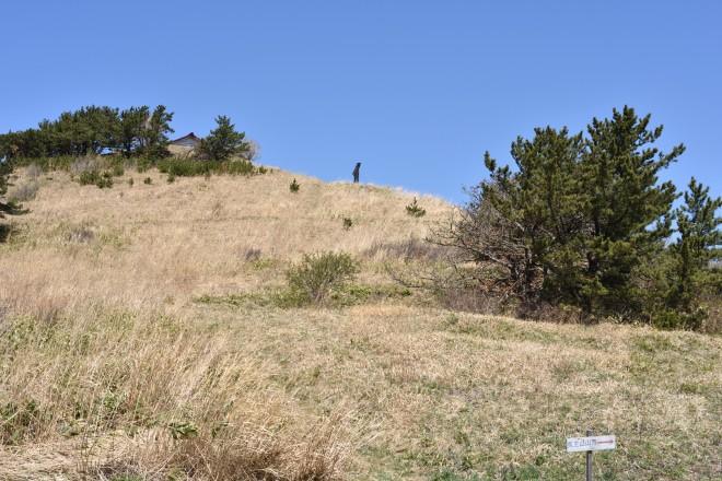 勝山館跡ガイダンス施設の駐車場から見た鳥居