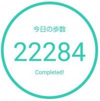 2日間で3万歩弱歩いてきた【FiFiC】