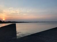 アニマルデー 千葉の海・・・