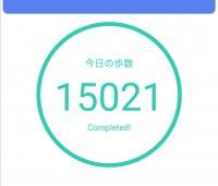 今日もいっぱい歩いた。