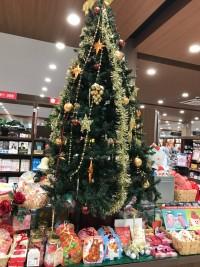 ネムツア11.20 クリスマスツリー