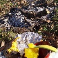 焚き火の一日
