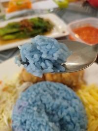 キッタンのKLライフ 第19話 青いご飯は好きですか?