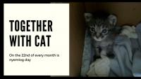 ほなねむさんちの猫事情 第三回 おトイレ編