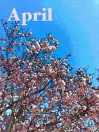 nemlogイベント情報(2020年4月8日)