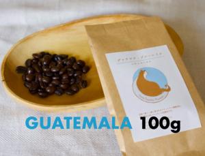 グァテマラ・ブルーレイク 焙煎豆100g