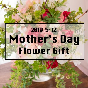 ayakokakoi FD【生花】2019 Mother's Day Flower Gift (送料込)