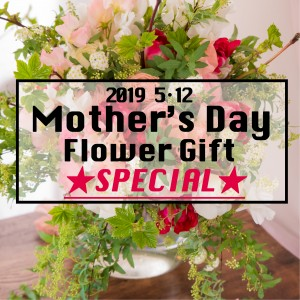 ayakokakoi FD【生花】2019 Mother's Day Flower Gift ★SPECIAL★(送料込)