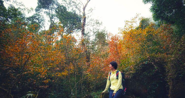 wechekin trekking-ta-lien-son-04.jpg
