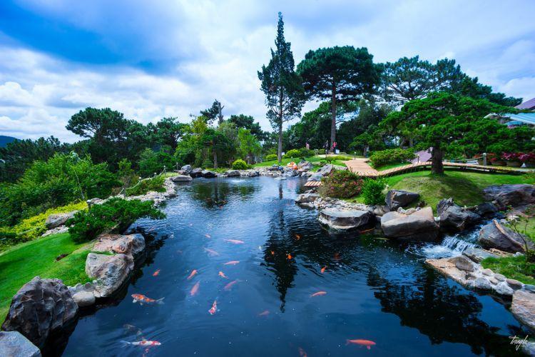 Ghé thăm 'vườn địa đàng' nhỏ xinh mà siêu đẹp ngay giữa lòng Đà Lạt