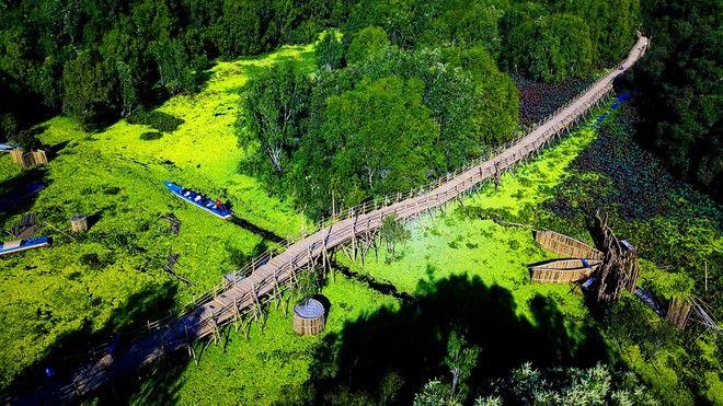 Du lịch miền Tây nhất định phải ghé thăm 3 cây cầu đẹp và độc đáo nhất vùng