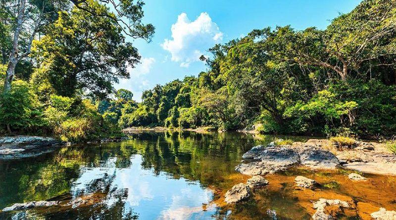 Chia sẻ kinh nghiệm du lịch Pleiku thơ mộng và đầy cuốn hút