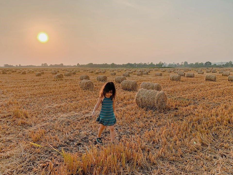 Những điểm đến bình dị mà đầy sức hấp dẫn ở Đồng Nai