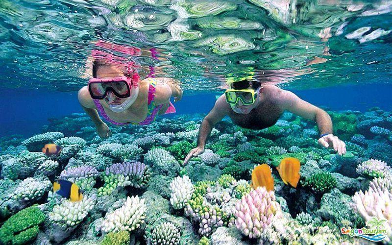 4 điểm lặn biển lặn ngắm san hô cực đẹp ở Phú Quốc
