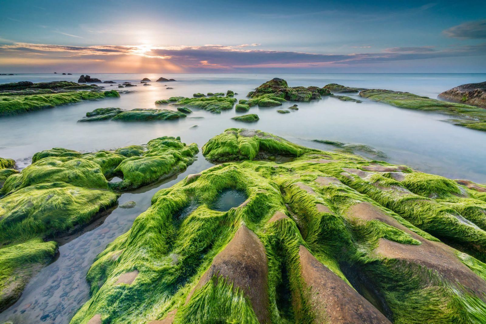 Khám phá vẻ đẹp hoang sơ của bãi Rạn Nam Ô ở Đà Nẵng