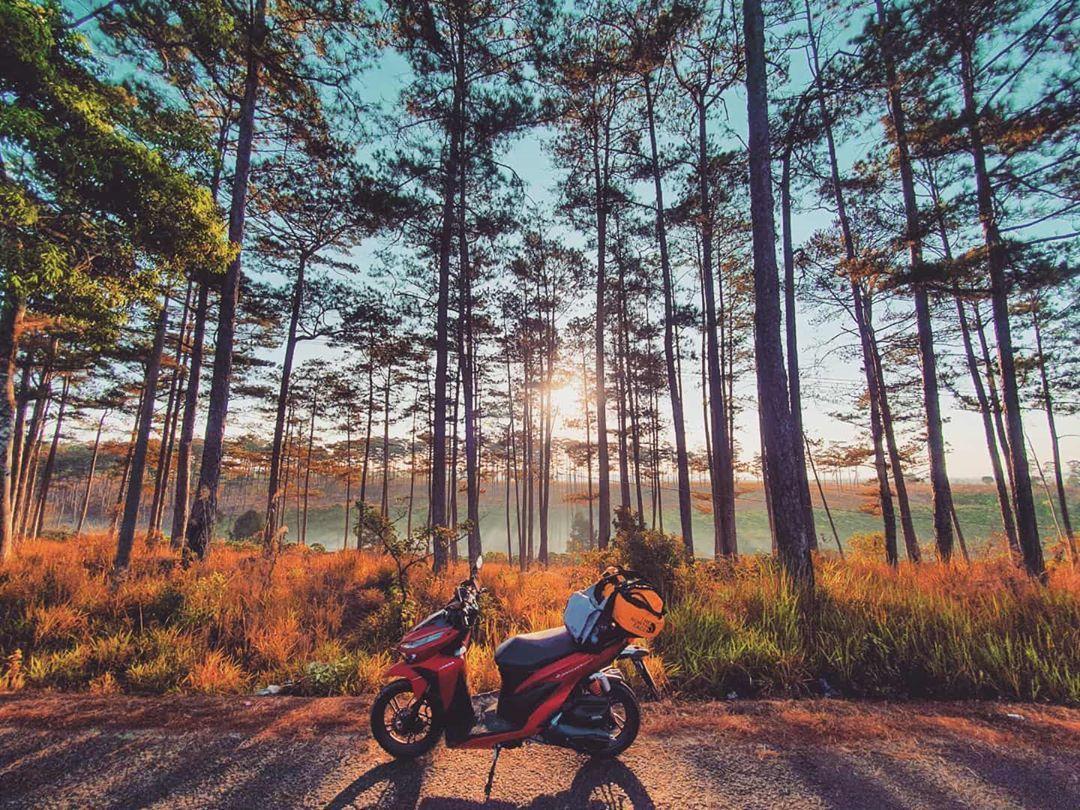 Thiên nhiên hoang sơ, cuốn hút của Khu bảo tồn thiên nhiên Nâm Nung ở Đắk Nông