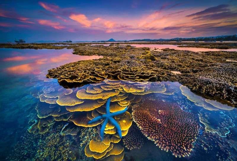 Tất tần tật kinh nghiệm du lịch Hòn Yến - hỏn đảo tuyệt đẹp tại Phú Yên