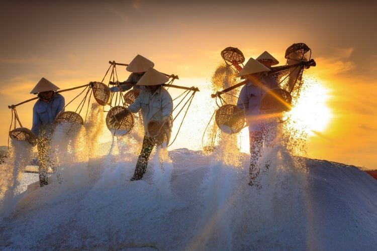 Beautiful white salt fields Ninh Thuan which you should definitely visit