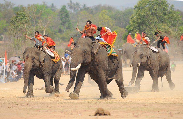 Đến Tây Nguyên không thể bỏ lỡ lễ hội đua voi náo nhiệt ở Buôn Đôn