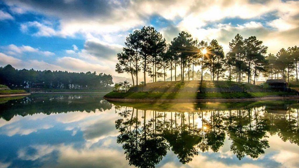 Ghé đến rừng thông Bản Áng đẹp nên thơ giữa lòng Mộc Châu