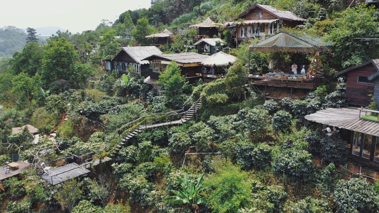 Gợi ý 3 homestay có view núi rừng tuyệt đẹp ở Đà Lạt cho du khách