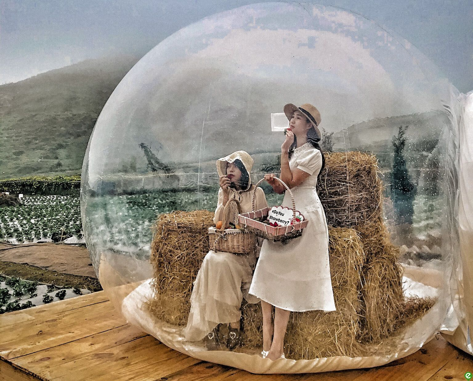 """Visiting the beautiful """"bubble house"""" in Moc Chau"""