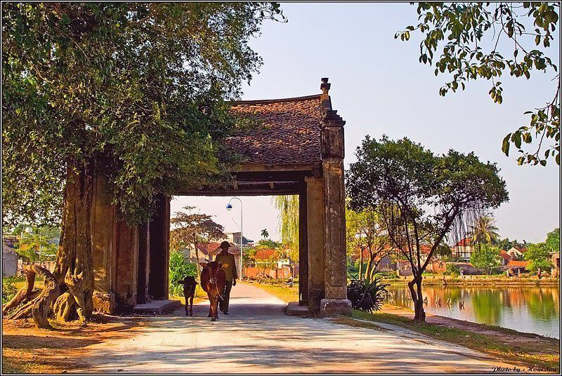 The five must-visit destinations in Duong Lam ancient village in Hanoi