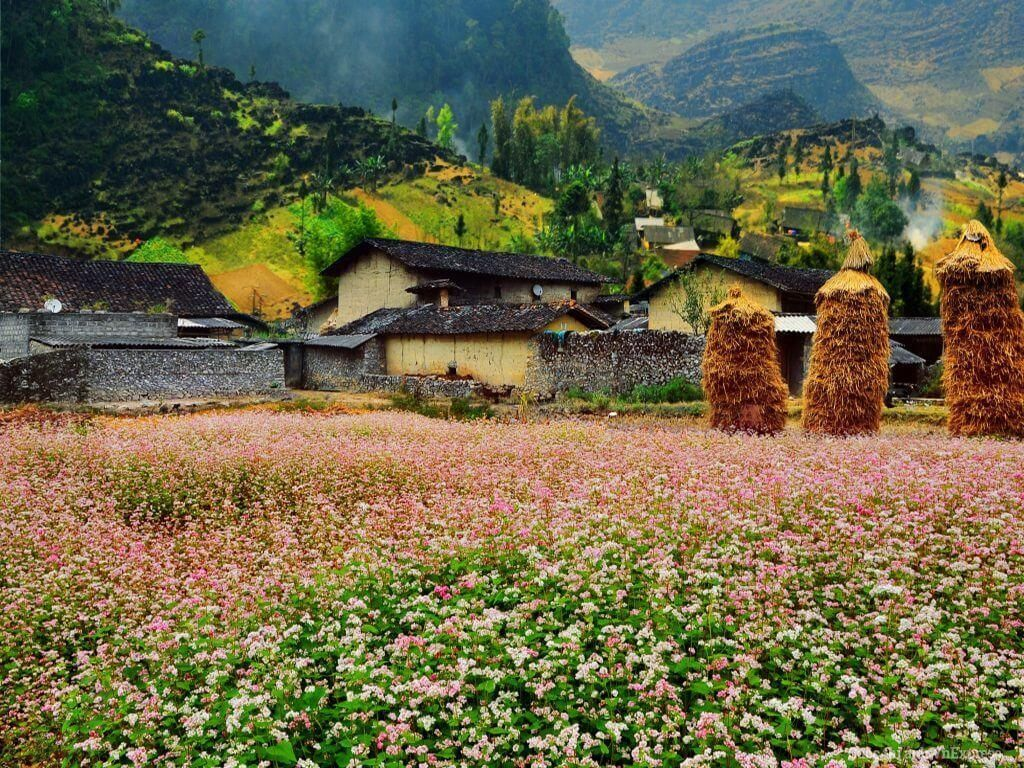 """Five pristine and beautiful destinations in Ha Giang making everyone """"fall in love"""""""