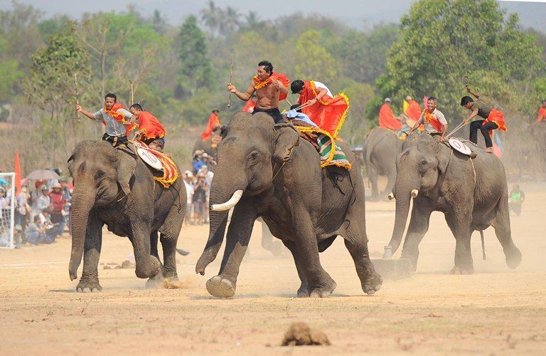 When coming to the Central Highlands, you should not miss the bustling Elephant Racing Festival in Don Village