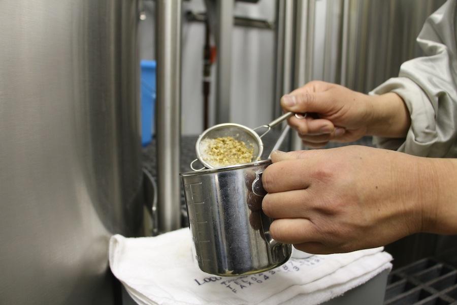 世界同時開催で女性のためのビール造り!国際女性デーにあわせた特別限定醸造ビールが誕生。