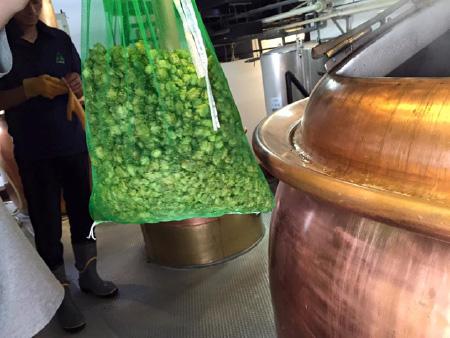 ふたこビール 醸造シーン