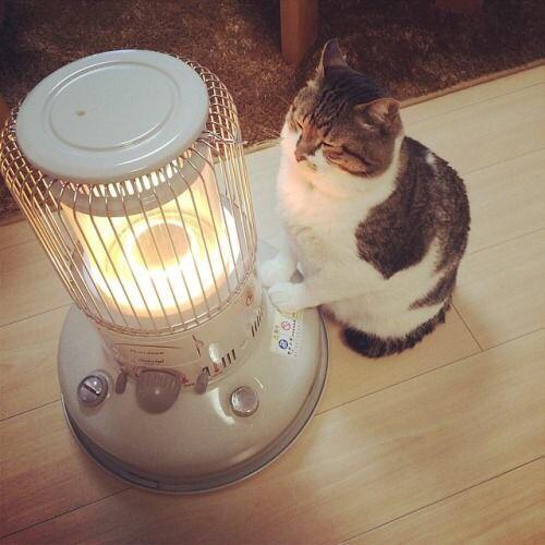 暖房器具の選び方を徹底解説