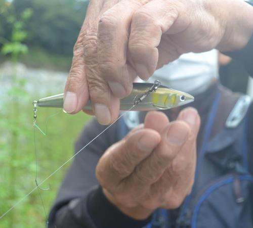 賛否両論ルアーでアユ釣り 友釣りを取り巻く現状厳しく/前編 - 釣り : 日刊スポーツ