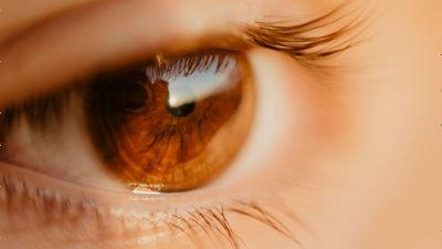 盲目であることは統合失調症から人を守るという可能性が研究で示される - GIGAZINE