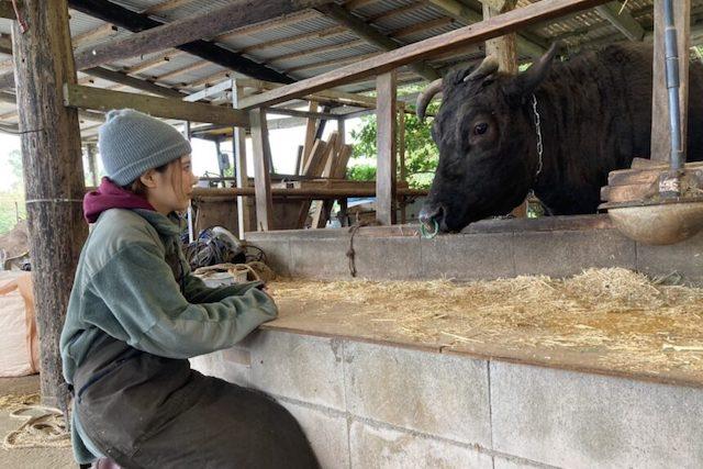 私は一ヶ月後、この牛を殺します。〜私がヴィーガンにならないと決めるまで〜 | ロカフレ
