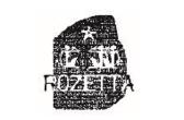 ロゼッタが全社員に英語禁止令|ロゼッタのプレスリリース