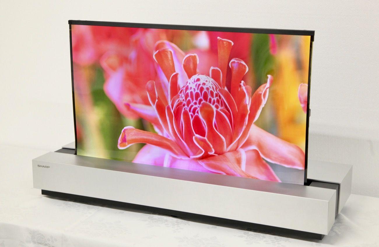 シャープ、「巻けるテレビ」向け有機ELパネル発表 NHKと共同開発 - Engadget 日本版