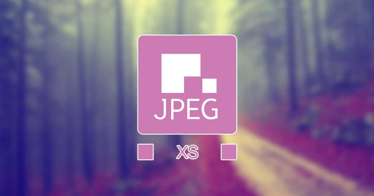 新画像フォーマット「JPEG XS」発表。低レイテンシーで高画質、ストリーミングやVR向け - Engadget 日本版