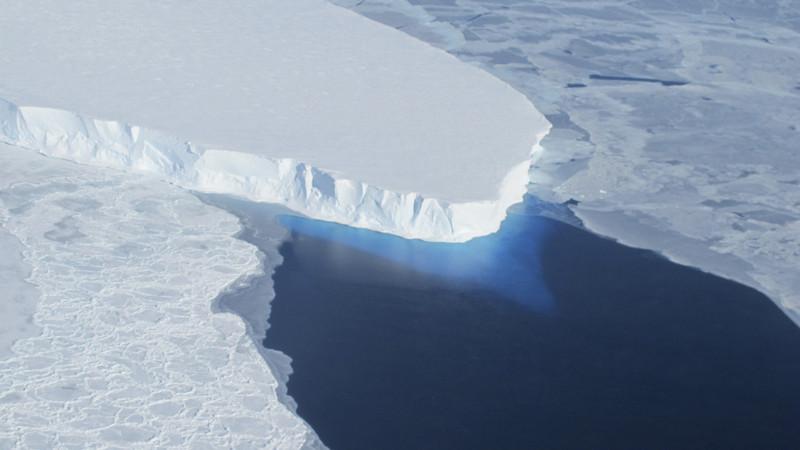 人類誕生の最南端で史上最高18.3℃  南極(森さやか) - 個人 - Yahoo!ニュース