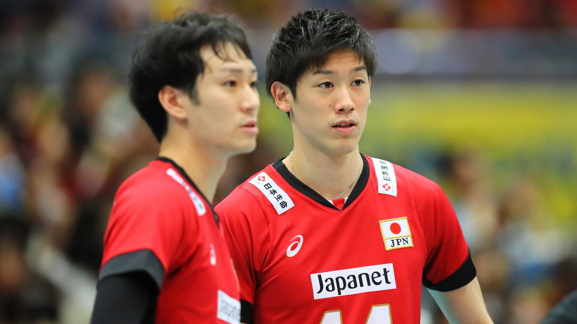 日本 男子 イケメン バレー 代表
