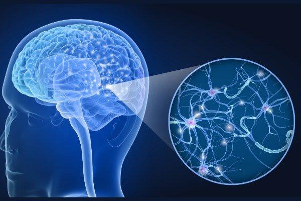 人間の脳は有機スーパーコンピュータだった 「0と1」で記憶を保存すると明らかに - ナゾロジー