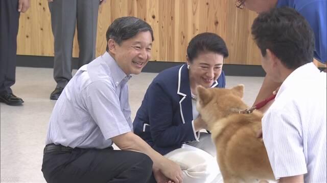 秋田 動物 愛護 センター