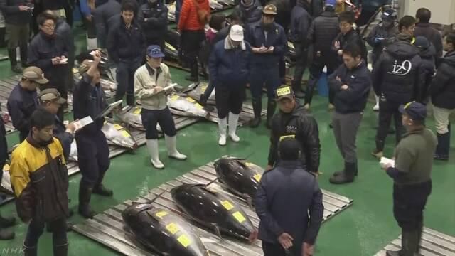 大間のマグロが過去最高値3億3360万円 豊洲市場で初の初競り | NHKニュース
