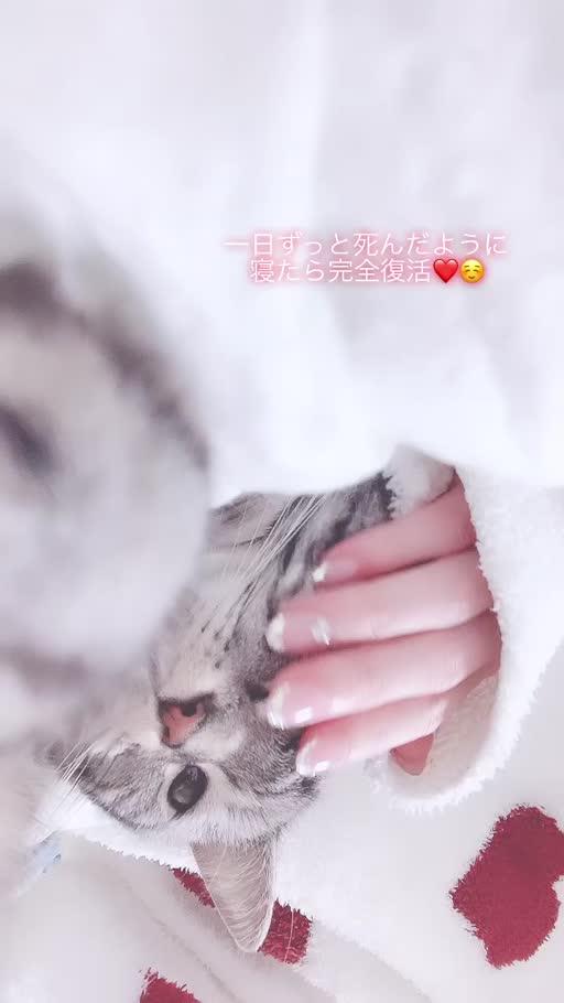 夢乃 サラ